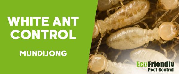 White Ant Control  Mundijong