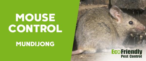 Mouse Control  Mundijong