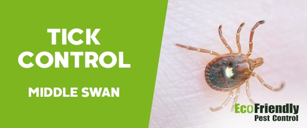 Ticks Control  Middle Swan