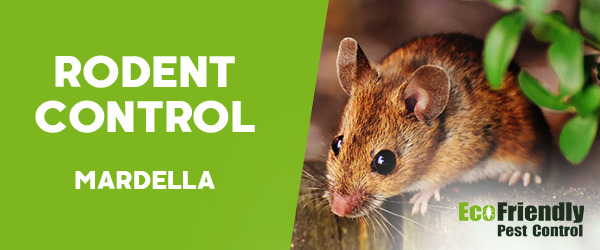 Rodent Treatment Mardella