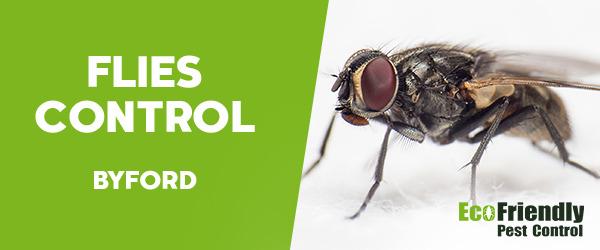 Flies Control  Byford
