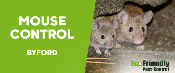 Mouse Control  Byford