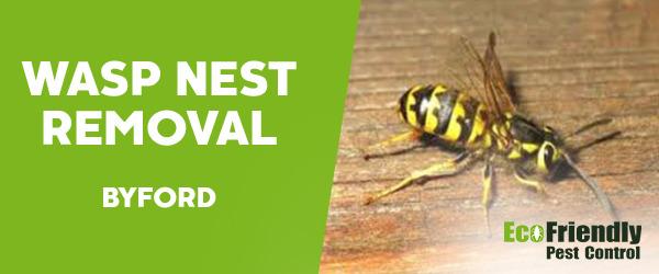 Wasp Nest Remvoal  Byford