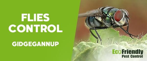 Pest Control Gidgegannup