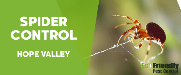Pest Control Hope Valley