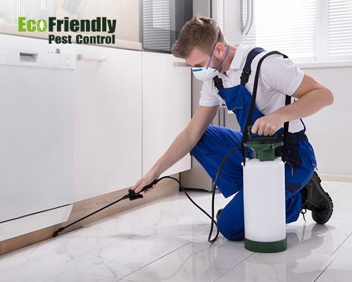 Pest Control Alkimos