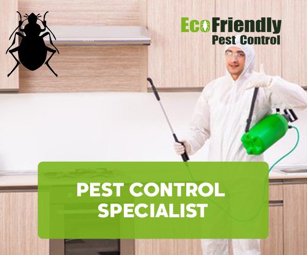 Pest Control Bayswater
