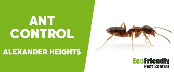 Pest Control Alexander Heights