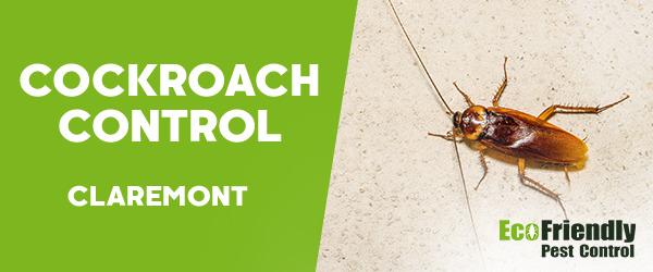 Cockroach Control  Claremont