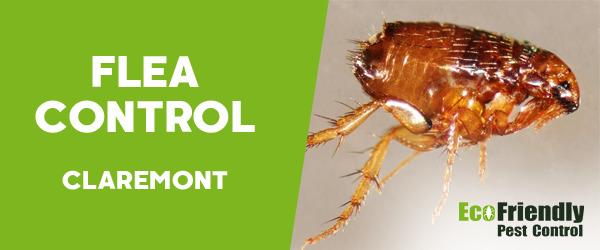 Fleas Control  Claremont