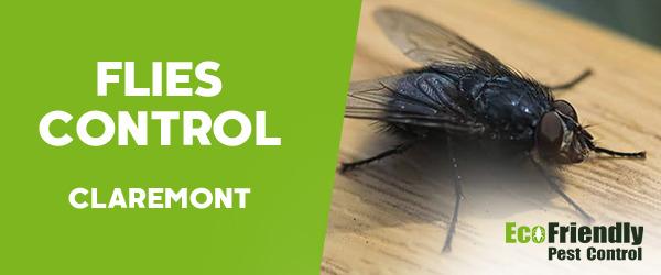 Flies Control  Claremont