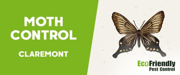 Moth Control  Claremont