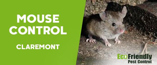 Mouse Control  Claremont