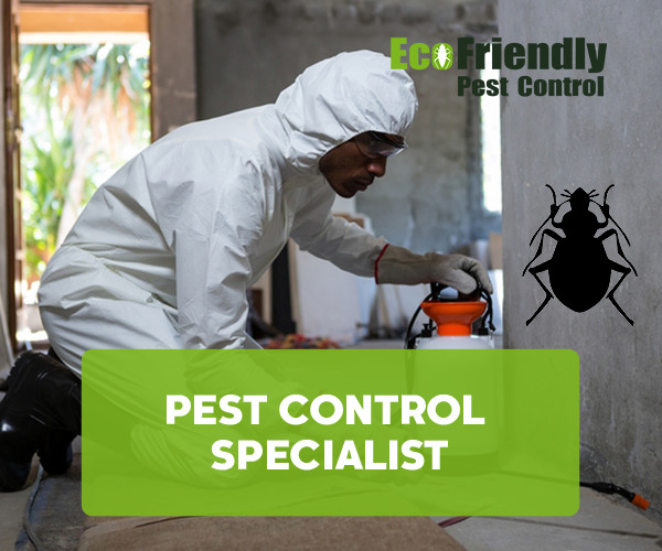 Pest Control Naval Base