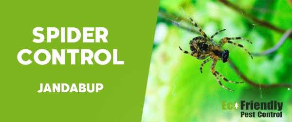 Pest Control Jandabup