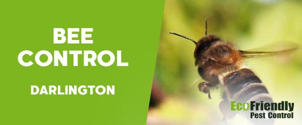 Bee Control  Darlington