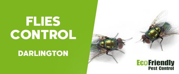 Flies Control  Darlington