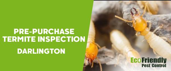 Pre-purchase Termite Inspection  Darlington