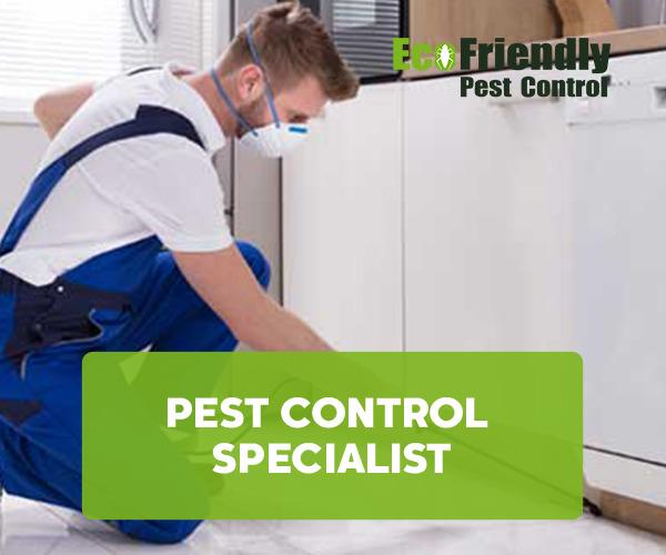 Pest Control Stoneville