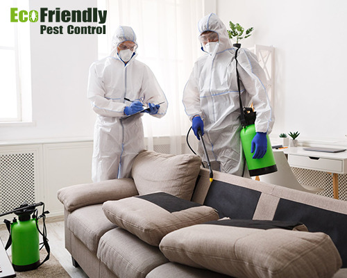 Best Pest Control Glen Forrest