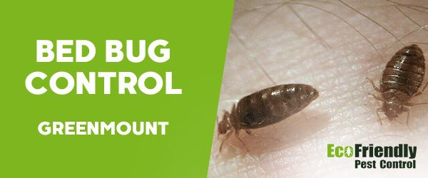Bed Bug Control GREENMOUNT