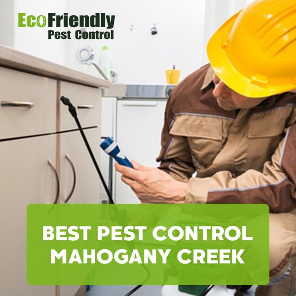 Best Pest Control MAHOGANY CREEK