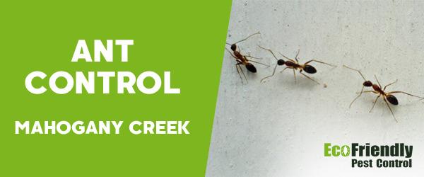Ant Control MAHOGANY CREEK