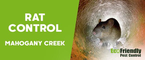Rat Pest Control MAHOGANY CREEK
