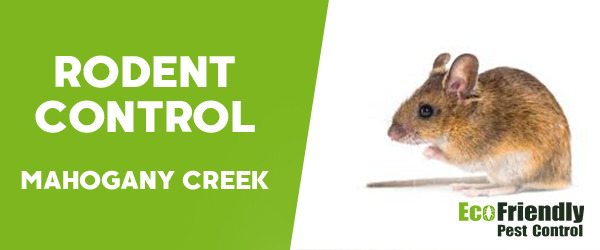 Rodent Treatment MAHOGANY CREEK