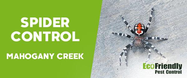 Spider Control MAHOGANY CREEK