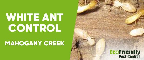 White Ant Control MAHOGANY CREEK
