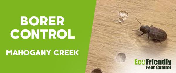Borer Control MAHOGANY CREEK