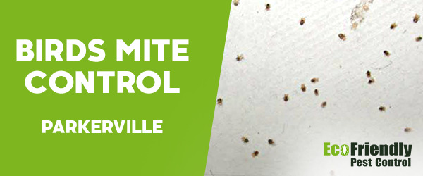 Bird Mite Control Parkerville