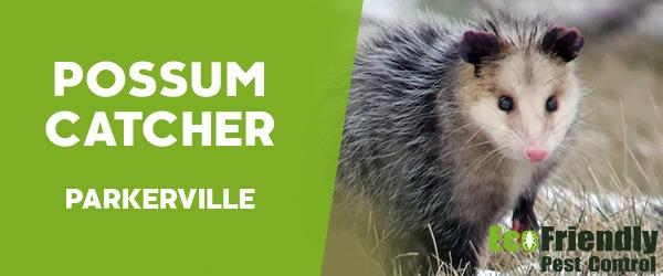 Possum Catcher Parkerville