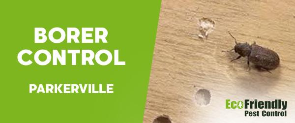 Borer Control Parkerville
