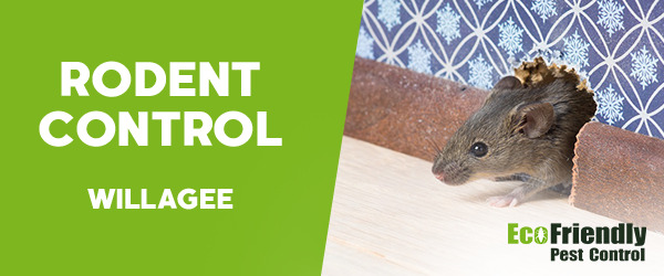 Rodent Treatment Willagee