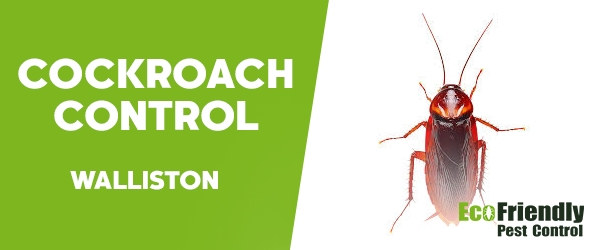 Cockroach Control Walliston