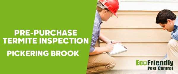Pre-purchase Termite Inspection Pickering Brook