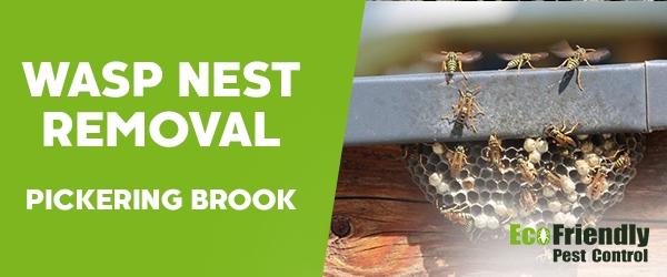 Wasp Nest Remvoal Pickering Brook