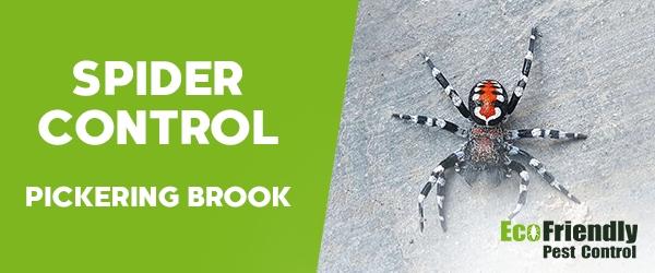Spider Control Pickering Brook