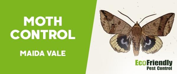 Moth Control Maida Vale