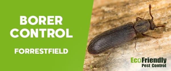 Borer Control Forrestfield