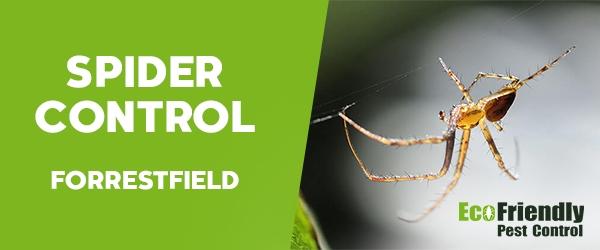 Spider Control Forrestfield