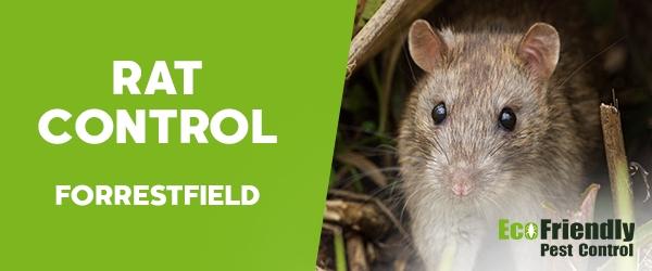 Rat Pest Control Forrestfield