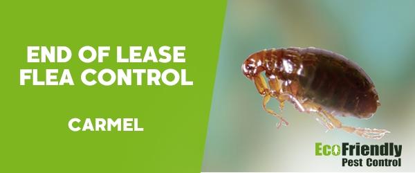 End of Lease Flea Control Carmel