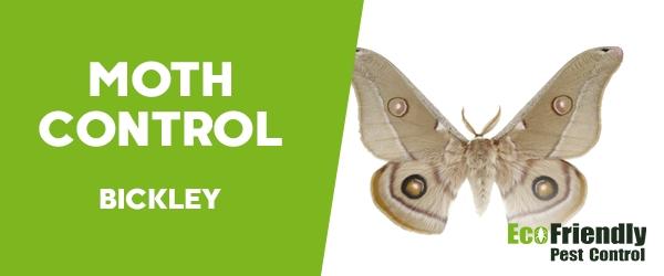 Moth Control Bickley