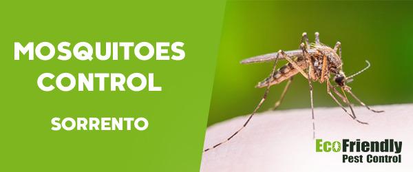 Mosquitoes Control Sorrento