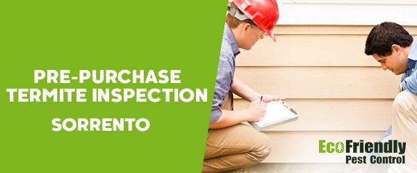Pre-purchase Termite Inspection Sorrento