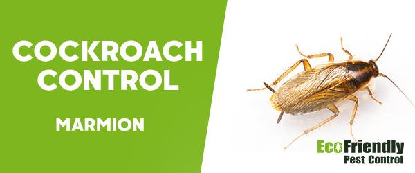 Cockroach Control Marmion