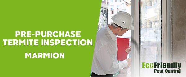 Pre-purchase Termite Inspection Marmion